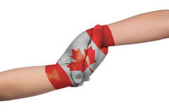 Helping hands of two children with Canada flag painted. In isolated white background stock photo