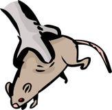 Helpless Rat in Bird Talons Stock Photos