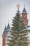 Helsingborg Christmas Time Royalty Free Stock Photo