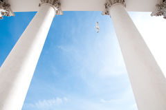 Helsinki cathedral columns Stock Images