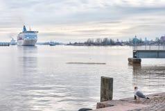 helsinki finland Veerboten in de Golf van Finland Royalty-vrije Stock Foto