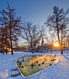 Helsinki park with pond Royalty Free Stock Image