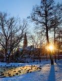 Helsinki park with pond Stock Image