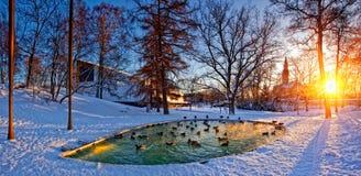 Helsinki park with pond Royalty Free Stock Photos