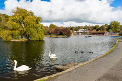 Helston Boating Lake Royalty Free Stock Photos