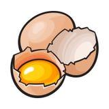 Helt och sprucket brutet fegt ägg med äggula inom royaltyfri illustrationer