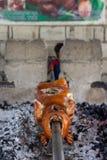 Helt svin som är lagade mat Lechon Royaltyfri Fotografi