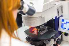 Helth care professional microscoping. Royalty Free Stock Images