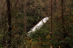 Helton Creek Falls Stock Photos