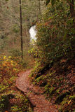Helton Creek Falls Royalty Free Stock Image