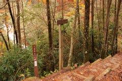 Helton Creek Falls Trailhead Stock Image