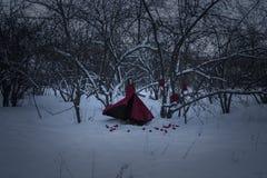 Heluin概念 一个红色斗篷的巫婆 库存图片