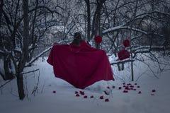 Heluin pojęcie Czarownica w czerwonej pelerynie przeciw Zdjęcia Royalty Free