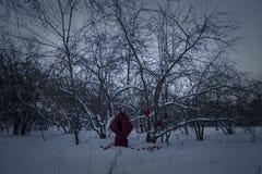 Heluin pojęcie Czarownica w czerwonej pelerynie przeciw Zdjęcie Royalty Free