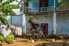 Helvete Ville som är nyfiken är, Madagascar Royaltyfria Foton