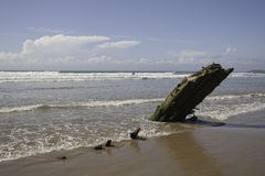 Helvetia Shipwreck Royalty Free Stock Photos