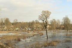 Hem- översvämning Arkivbild