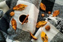 Hem- dekor för höst, vit keramisk kaffekopp för tappning, kanelbruna pinnar, anisstjärnor och honung i honungskakor på den rutiga arkivbilder