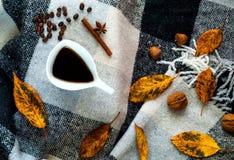 Hem- dekor för höst, vit keramisk kaffekopp för tappning, kanelbruna pinnar, anisstjärnor och honung i honungskakor på den rutiga arkivfoto