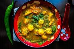 Hem gjord curry Arkivbilder