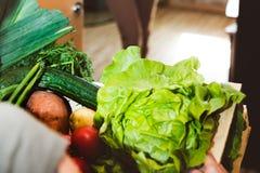Hem- leverans av nya grönsaker, livsmedelsbutikask royaltyfri bild