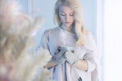 Hem- livsstilflicka för vinter jul min version för portföljtreevektor Royaltyfri Bild
