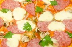 Hem- pizza med salami och mozzarellaen Royaltyfri Bild