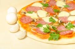 Hem- pizza med salami- och mozzarellaost med champinjoner Royaltyfria Bilder