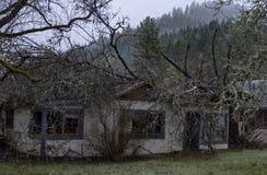 Hem som förstörs av det stupade trädet i Wolf Creek, Oregon arkivbilder