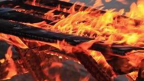 Hem- stilvideo ljud Extrem n?rbildvideo av en brinnande picknicktabell