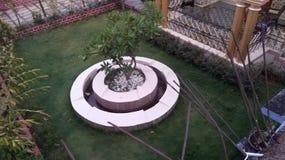 Hem- trädgård med den centrala springbrunnen arkivbilder