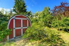 Hem- trädgård med det lilla skjulet Arkivfoto