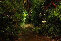 Hem- trädgård vid natt royaltyfria foton