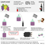 Hem- vindanande Vin från druvor Infographics Royaltyfria Foton