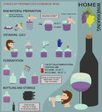 Hem- winemaking Vin från druvor Infographics Royaltyfri Bild