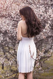 Hembra agraciada en el vestido blanco que se coloca con ella detrás debajo de árboles florecientes en jardín de la primavera fotos de archivo libres de regalías