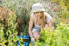 Hembra alegre que planta las flores en yarda Foto de archivo