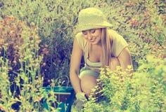 Hembra alegre que planta las flores en yarda Imágenes de archivo libres de regalías