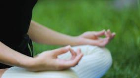Hembra de la yoga en la actitud en hierba verde, concentración pacífica, balanza de la meditación metrajes