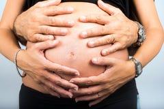 Hembra embarazada Imagenes de archivo