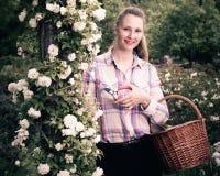 Hembra que lleva a cabo una cesta y una situación cerca de las rosas florecientes Imágenes de archivo libres de regalías