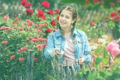 Hembra que presenta cerca de rosas y que sostiene una cesta en el jardín Imagenes de archivo