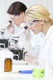 Hembras, científicas en los microscopios en laboratorio Imagen de archivo libre de regalías