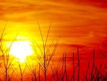 Hemel bij zonsondergang Stock Fotografie