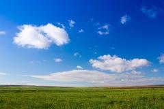 Hemel en gras backround stock afbeeldingen