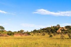 Hemel en rotsen op eindeloze vlakte van Serengeti Tanzania, Afrika Royalty-vrije Stock Foto's