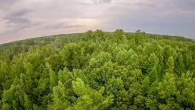 Hemel en van de wolkenzonsondergang landschap over van Zuid- York Carolina Royalty-vrije Stock Afbeelding