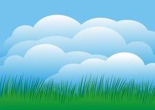Hemel met gras Stock Afbeelding