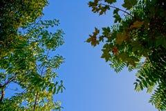 Hemel met zon royalty-vrije stock fotografie