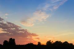Hemel na zonsondergang tegen van donkere silhouetten van bomen Royalty-vrije Stock Afbeelding